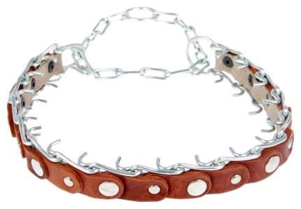 Ошейник для собак Зооник, строгий, проволочный с ручкой, коричневый, 44-60 см x 45 мм