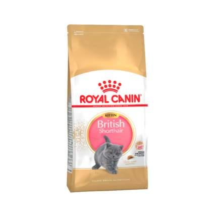 Сухой корм для котят ROYAL CANIN British Shorthair Kitten, британская, птица, 0,8кг