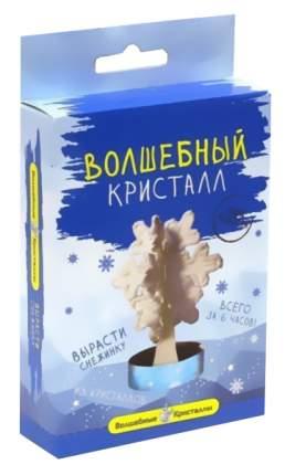 Набор для выращивания кристаллов Бумбарам Снежинка