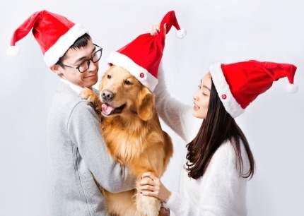 Рождественская Шапка Xiaomi Magic Fun Christmas Red Hat