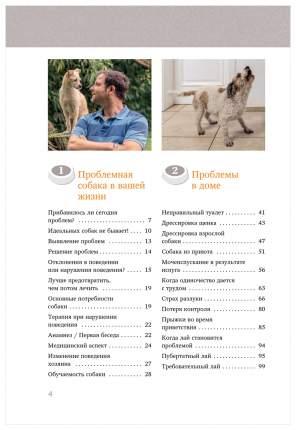Идеальная Собака Не Выгуливает Хозяина: как Воспитать Собаку Без Вредных привычек