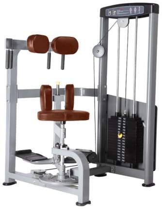 Тренажер для пресса Bronze Gym D-011
