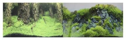 Фон для аквариума Prime Затопленный лес/Камни с растениями 50х100см