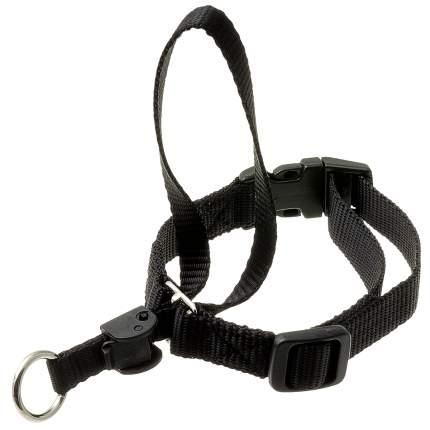 Недоуздок для собак ZooOne, размер 3, черный, шея 45-60 см