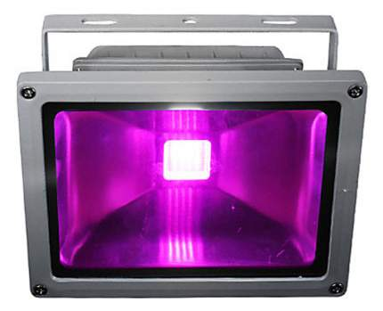 Светодиодный фитопрожектор для досветки растений ЭмиЛайт 20 Вт