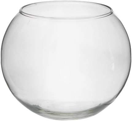Аквариум для рыб Evis, шаровая ваза, бесшовный, 5 л