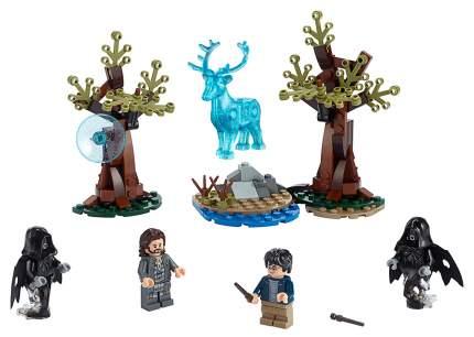 Конструктор LEGO Harry Potter Экспекто Патронум!