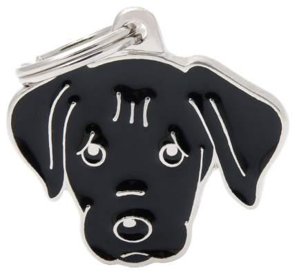 Адресник на ошейник для собак My Family Colors Лабрадор, черный, средний, 3,3х2,6 см