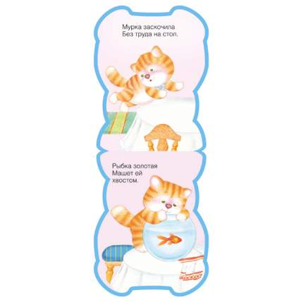Книга кошка