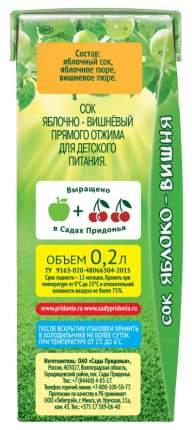 Сок Сады Придонья Яблоко и вишня с мякотью прямого отжима с 5 мес 200 мл