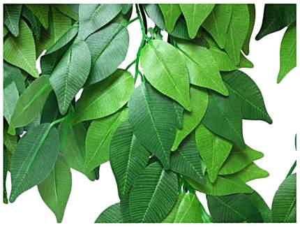 Растение для террариумов Trixie Ficus 20×50 см Зеленый