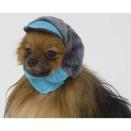 Шапка для собак ТУЗИК № 0 теплая с мехом (плащевка, мех, флис)