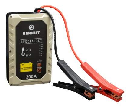 Пуско-зарядное устройство для АКБ Berkut JSC300A