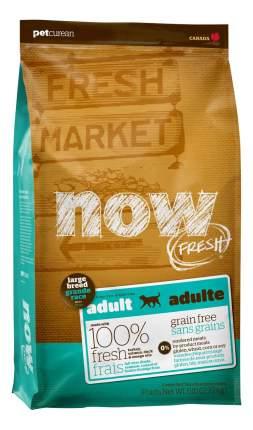 Сухой корм для собак NOW Fresh Adult Large, для крупных пород, индейка, утка,овощи,11,35кг