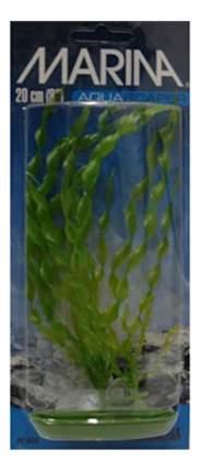 Hagen Растение пластиковое Валлиснерия спиральная, 20 см