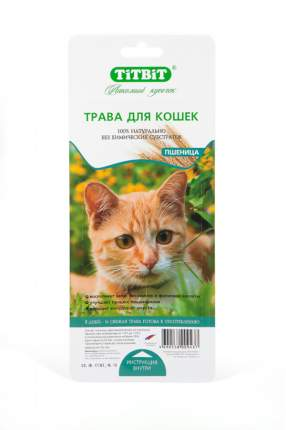 Трава для кошек TiTBiT, пшеница