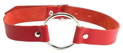 Кляп-кольцо BDSM Арсенал красный