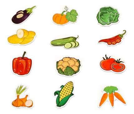 Магнитная игра Анданте MAG-RUS Овощи