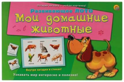 Игра настольная Рыжий кот Лото с загадками, Мои Домашние Животные 3+