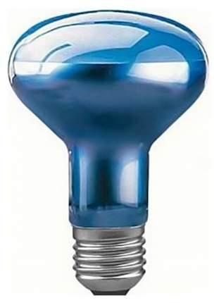 Лампа накаливания рефлекторная для растений (фито-лампа) Е27 60W груша синяя 50260
