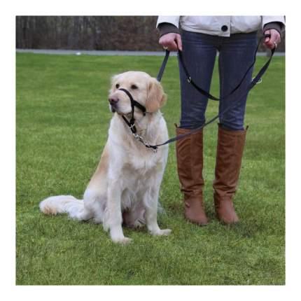 Намордник для собак TRIXIE тренировочный M 27см (длина поводка 40-48см)