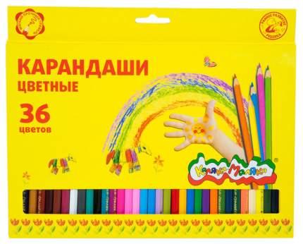 Цветные карандаши, 36 шт.  Каляка-Маляка