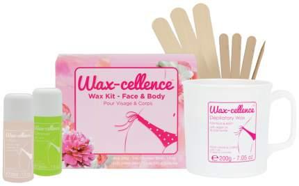 Набор для восковой эпиляции Lycon Wax-Cellence Home Waxing Kit