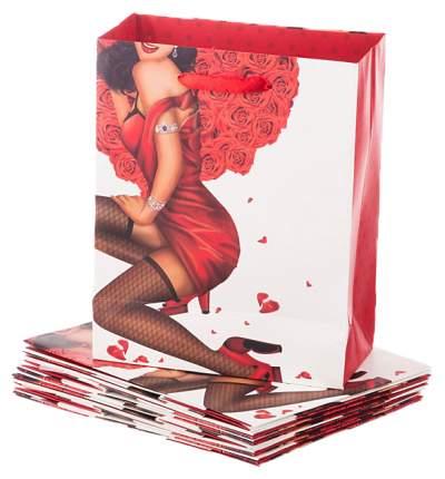 Пакет подарочный Lefard 73-545 Красный