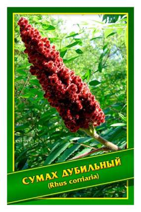 Семена Сумах Дубильный, 0,1 г Симбиоз