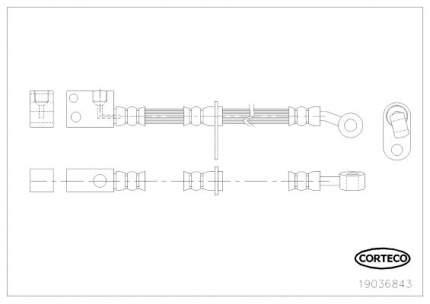 Шланг тормозной CORTECO 19036843