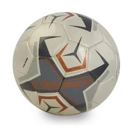 Футбольный мяч Larsen Team №5 white