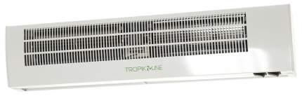 Тепловая завеса Тропик А-5