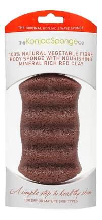 Губка The Konjac Sponge Company Premium Six Wave Body Puff with French Red