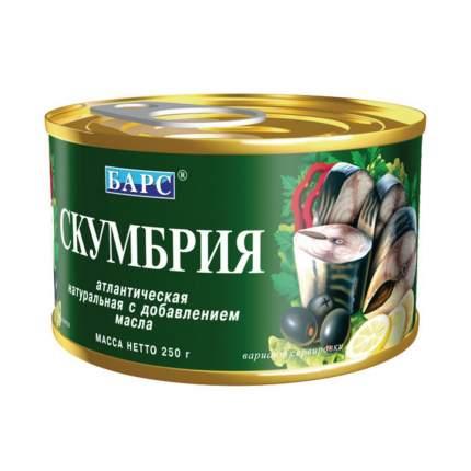 Скумбрия атлантическая натуральная Барс с добавлением масла 250 г