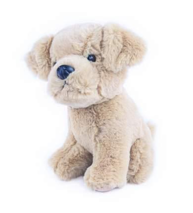 Мягкая игрушка Button Blue Собачка Лабрадор 20 см