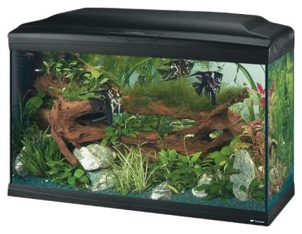 Аквариум для рыб Ferplast Cayman Professional, 120 л