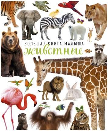 Книга Clever Большая книга Малыша. Животные