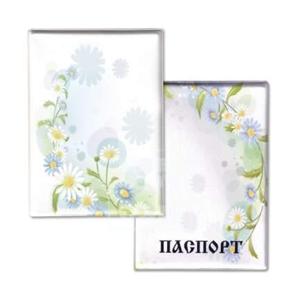 Обложка для паспорта «Ромашки» (038005обл001)