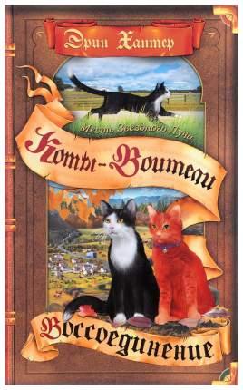 Коты-Воители, Месть Звездного луча, Воссоединение, В 2 книгах, книга 2