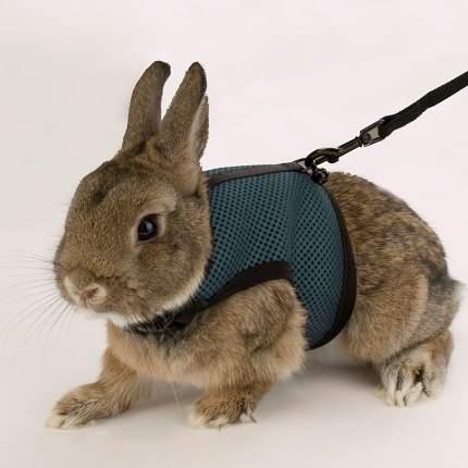 Поводок, шлейка для кроликов Ferplast , в ассортименте