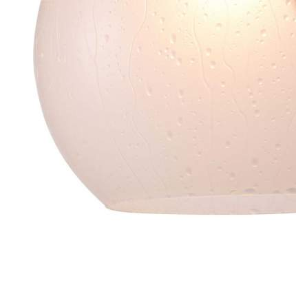 Подвесной светильник Maytoni Walter P529PL-01W