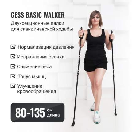 Палки для скандинавской ходьбы Gess Basic Walker двухсекционные