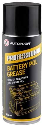 Полусинтетическая смазка Autoprofi Professional 0.36кг 520мл P020502