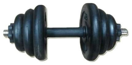 Пара гантелей MB Barbell 2 шт. по 20 кг