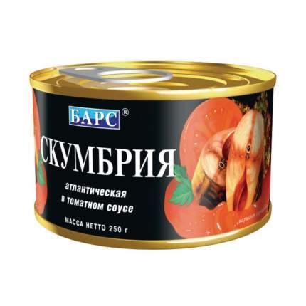 Скумбрия атлантическая Барс в томатном соусе 250 г