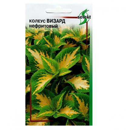 Семена Колеус Визард Нефритовый, 15 шт, Selekt Дом семян