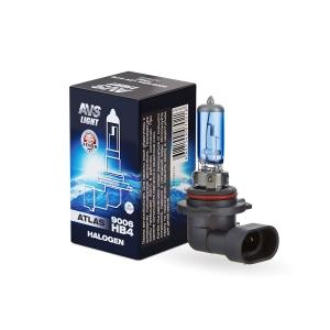 Галогеновые автомобильные лампы AVS A07021S