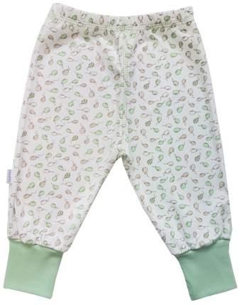Ползунки - штанишки Папитто с манжетом Воздушные шарики цвет салатовый р.20-62