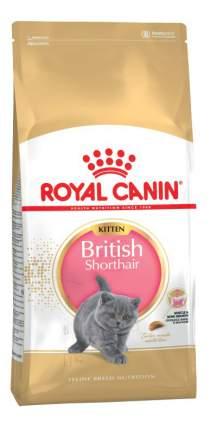 Сухой корм для котят ROYAL CANIN British Shorthair Kitten, британская, домашняя птица,10кг