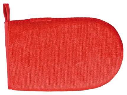 Рукавица для вычесывания TRIXIE цвет красный